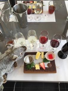 wine tour5